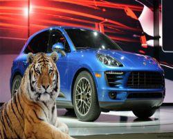 بورش تمنع الشركة المروّجة من الدعاية لسياراتها بالنمور الحية