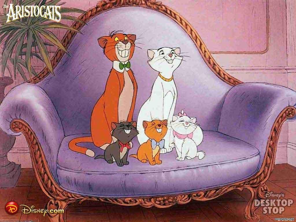 كارتون قطط