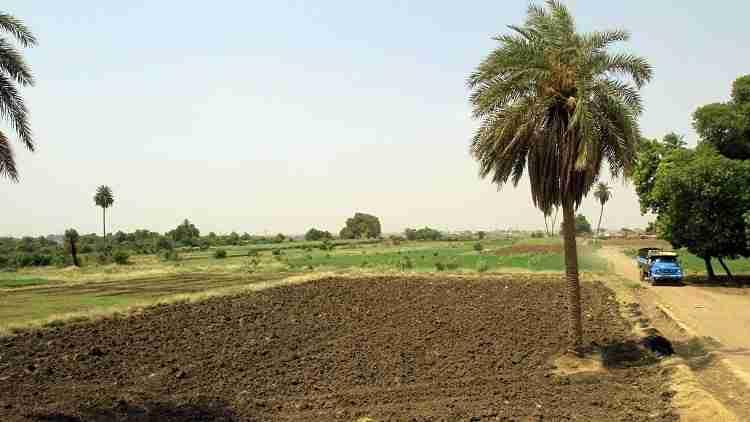 ارض للبيع في بير فضل