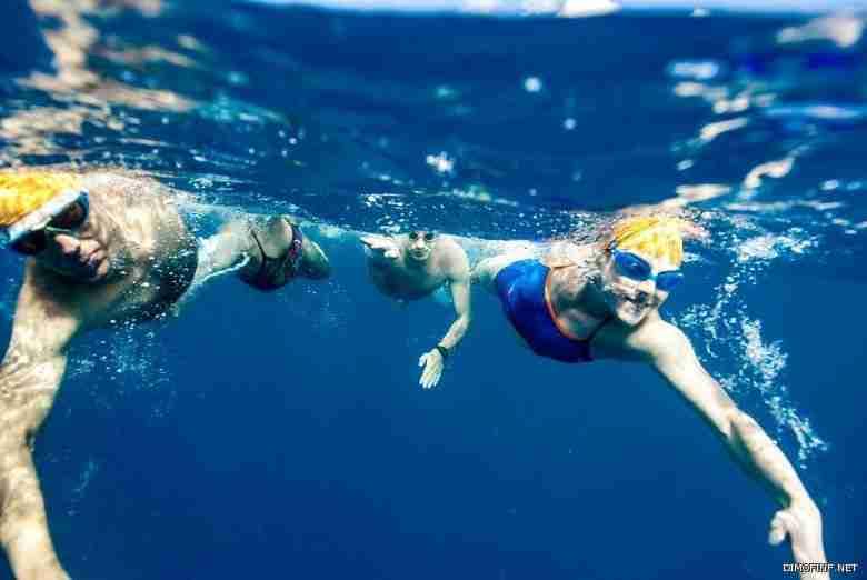 مونديال السباحة: تألق روسي تاريخي