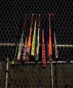 مضارب بيسبول
